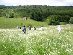 enfants courent hautes chaumes